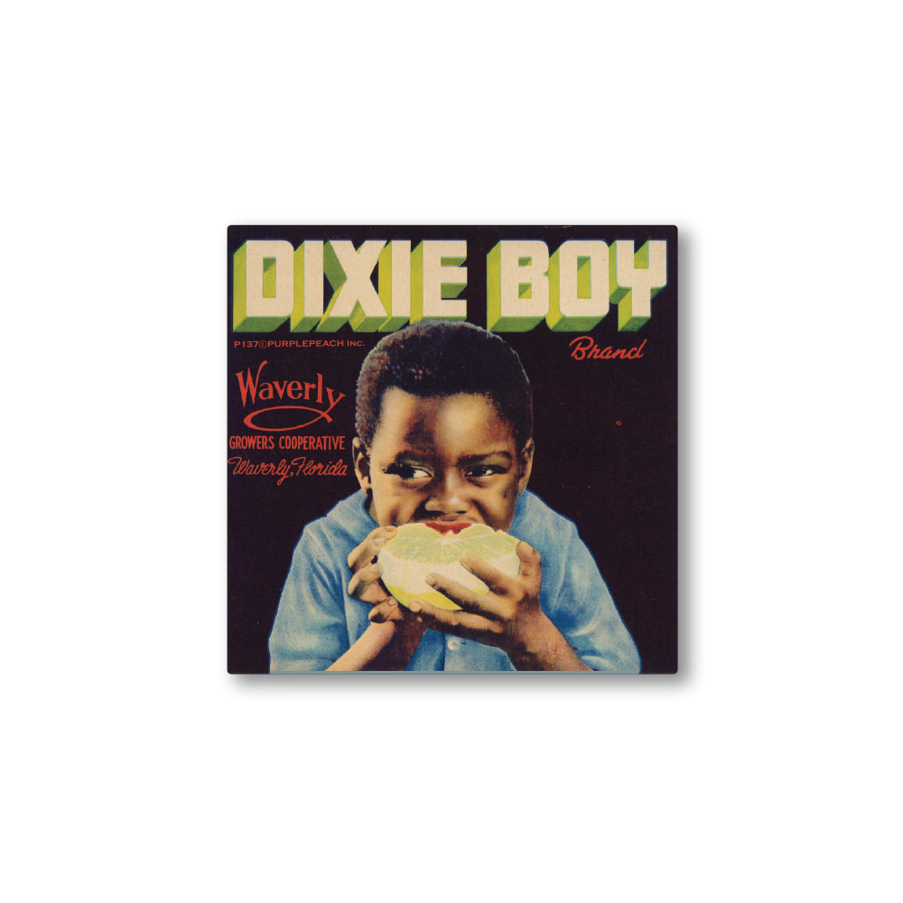 Dixie Boy