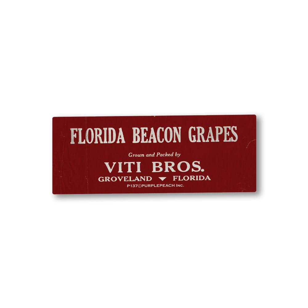 Florida Beacon Grapes