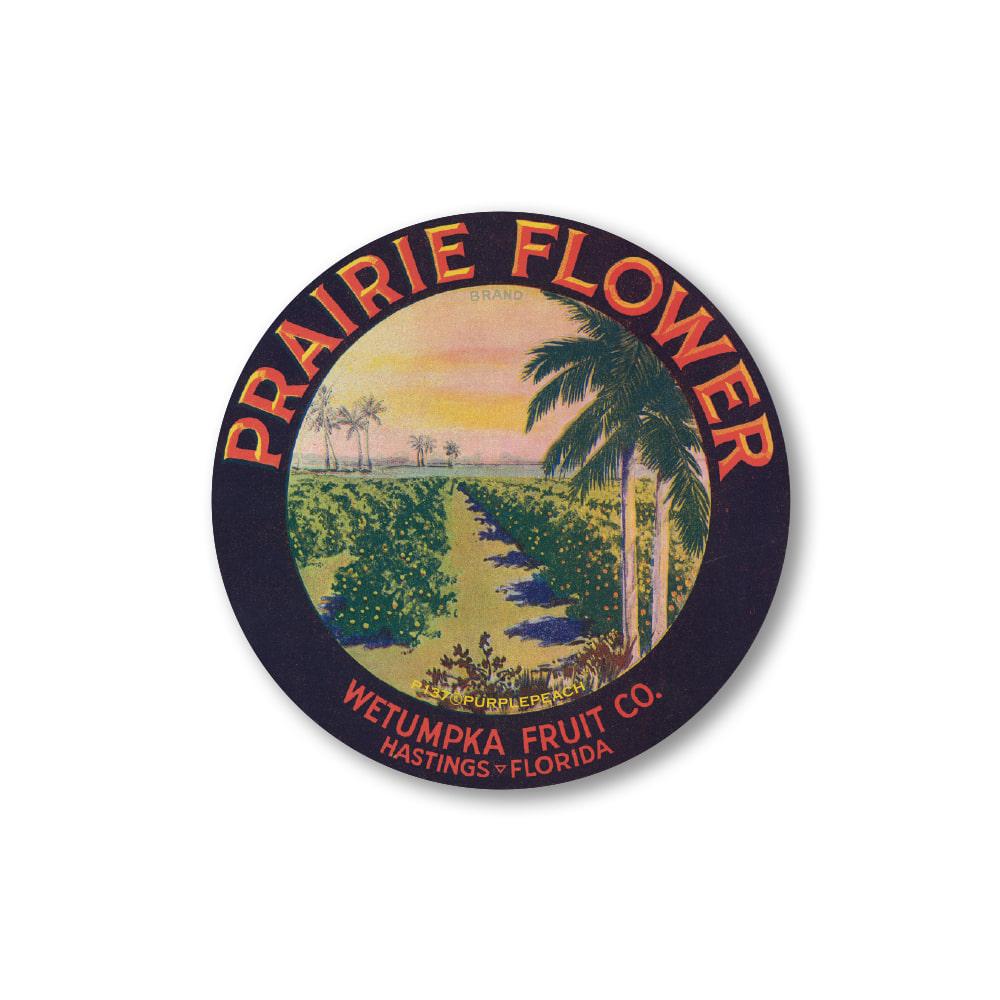 Prairie Flower circle